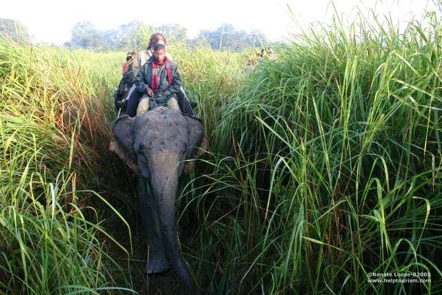 Help Tourism Photogallery Of Kaziranga National Park